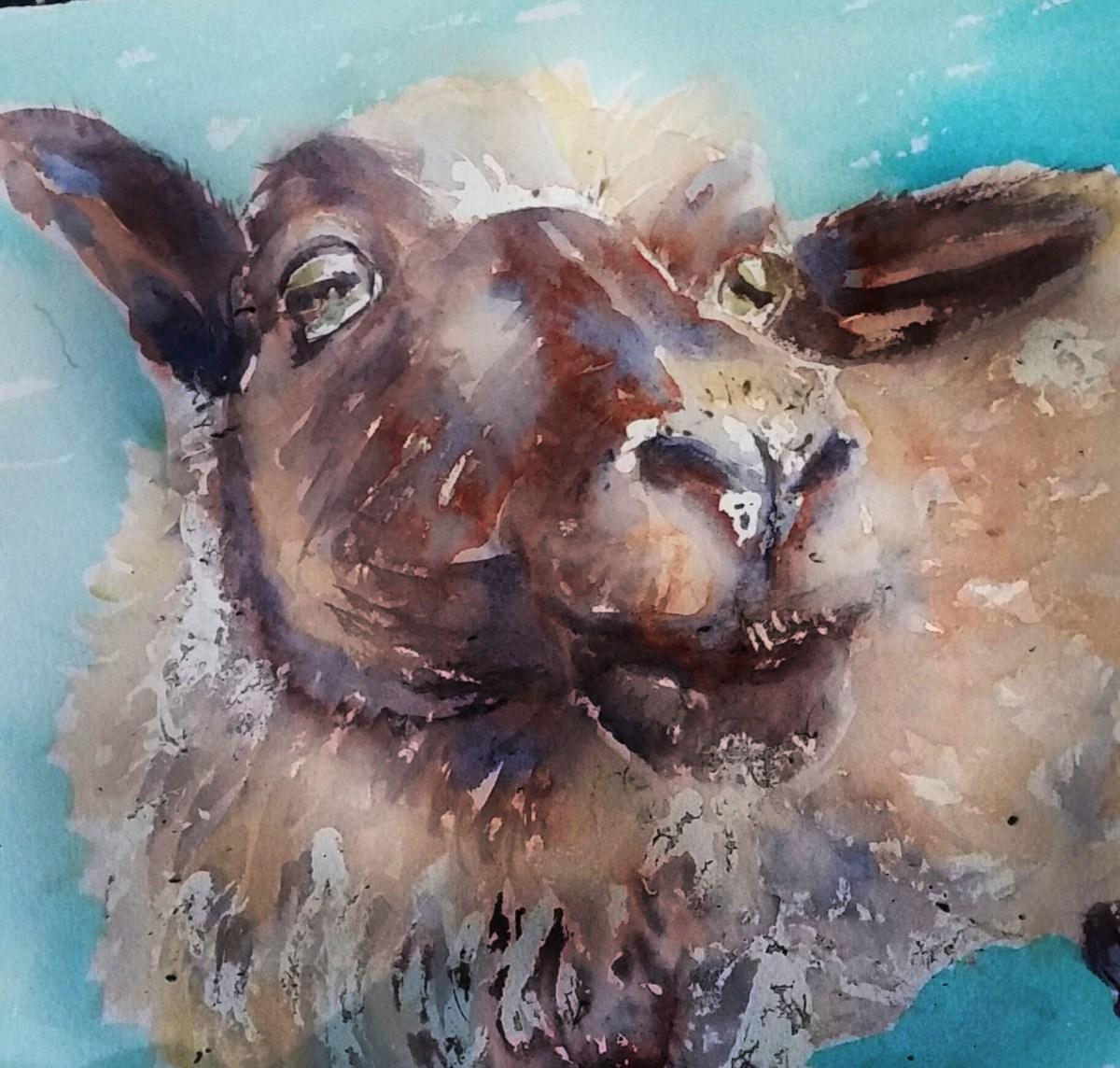 #WorldWatercolorGroup - Watercolor by Terhi Kalliola - Sheep - Doodlewash