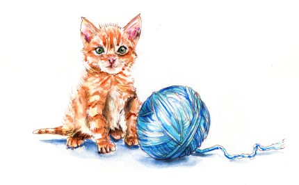 Day 15 - Playing With A Pet - Cat And Yarn Ball