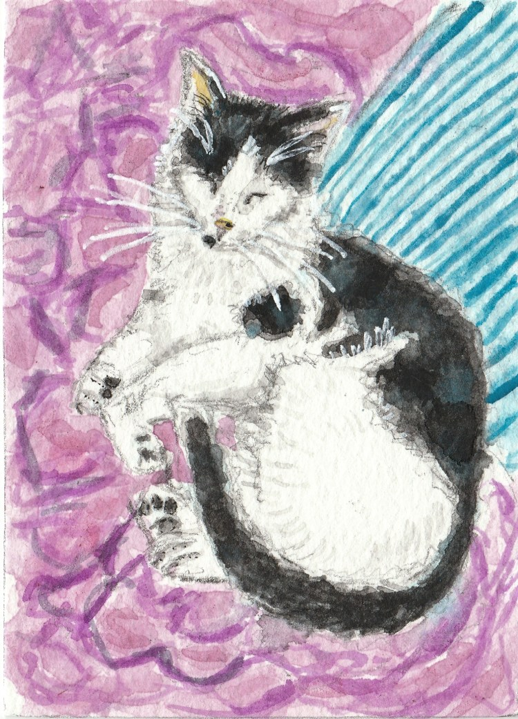 Emmy cat sleeping watercolor painting aceo IMG_20170905_0001