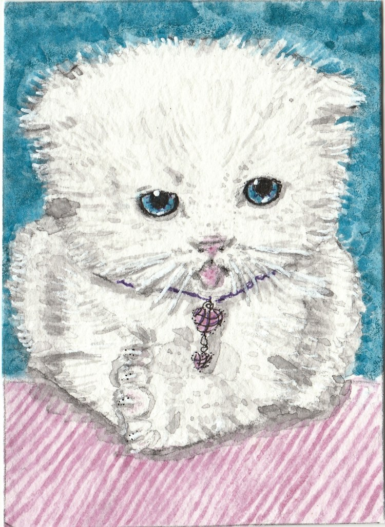 Sugar white kitten watercolor aceo IMG_20170909_0002