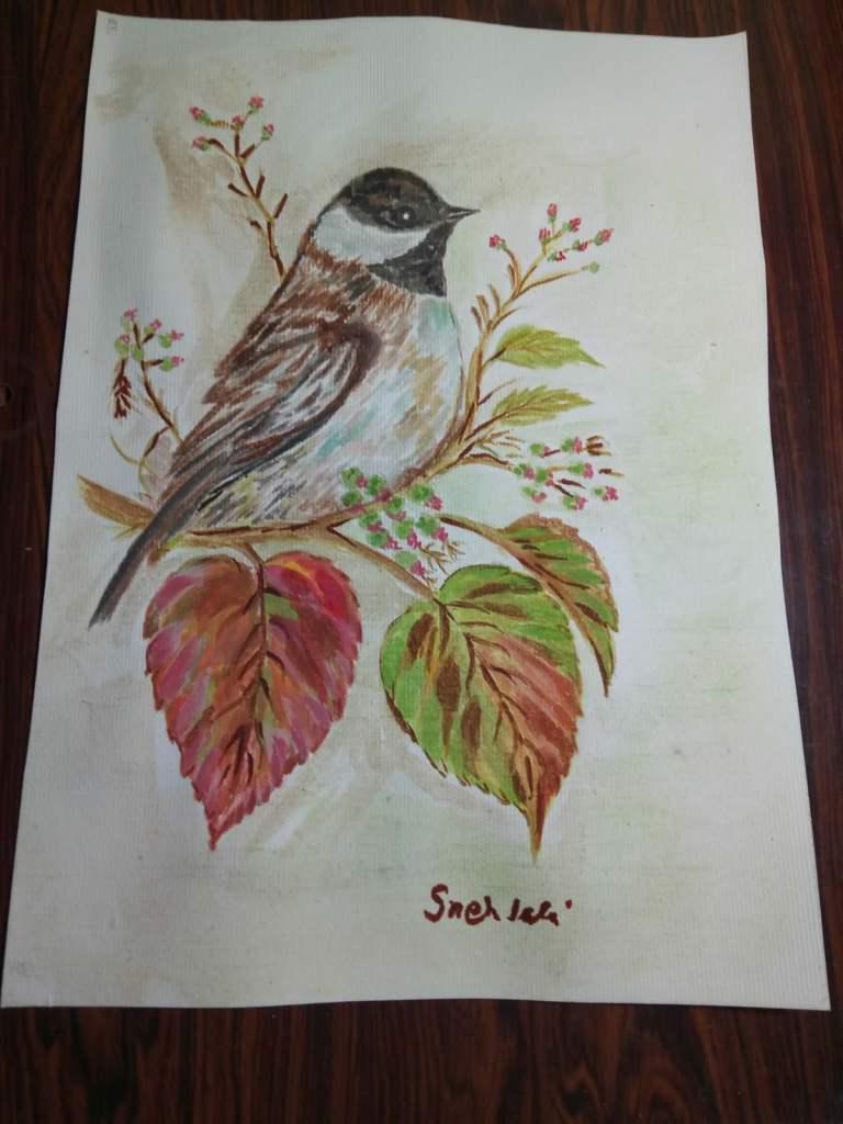 Bird paradise series. IMG_20170920_192558807