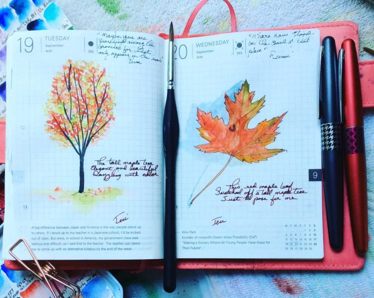 Two days of Hobonichi sketches. Inspiration was the maple tree across the street; the tree yesterday