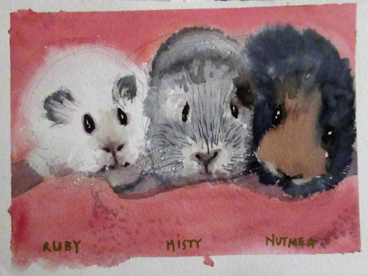 Was asked to paint my Mother\'s friend\'s pets – there were more but I\'ll n