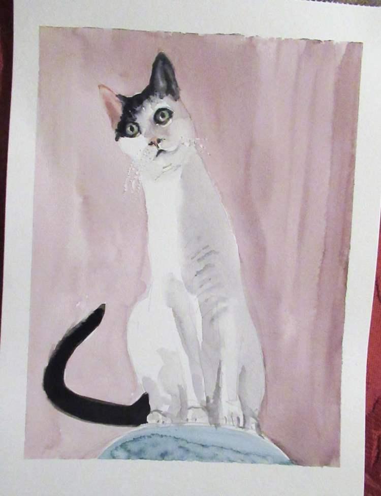 Miruche's cat, Nana. (He's been Modigliani-ed). IMG_7914
