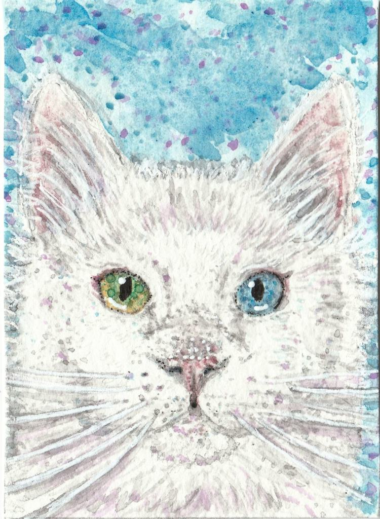 Fluffy white cat green and one blue eye watercolor painting klklk