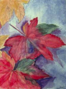 Autumn Leaves (complimentary colors) 2017-06-19 00.09.48