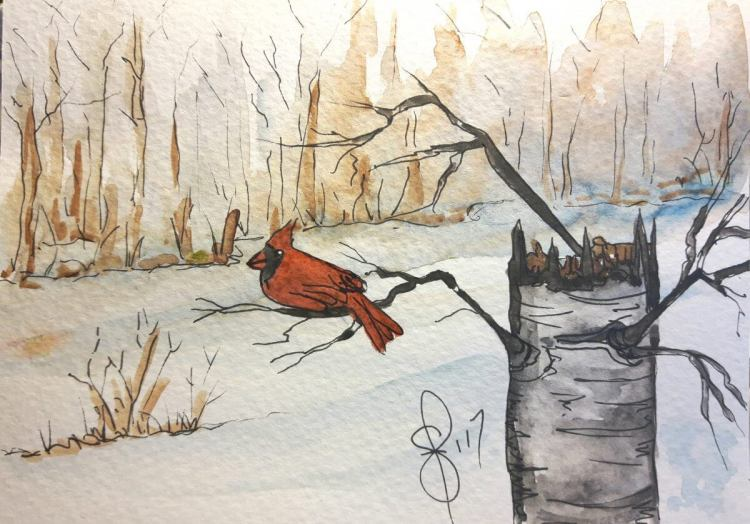 """""""Winter Cardinal"""" Another Christmas card. I know it isn't even Halloween yet but i"""