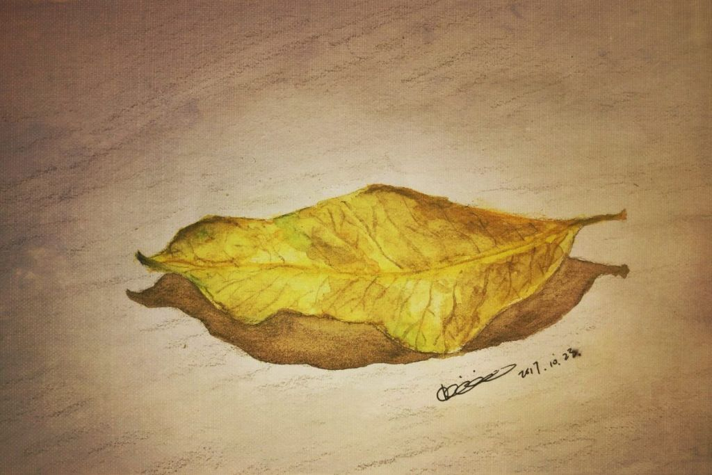 Here comes Autumn #WorldWatercolorGroup 24758999-95C6-417B-8B7E-8FFFA57130E6