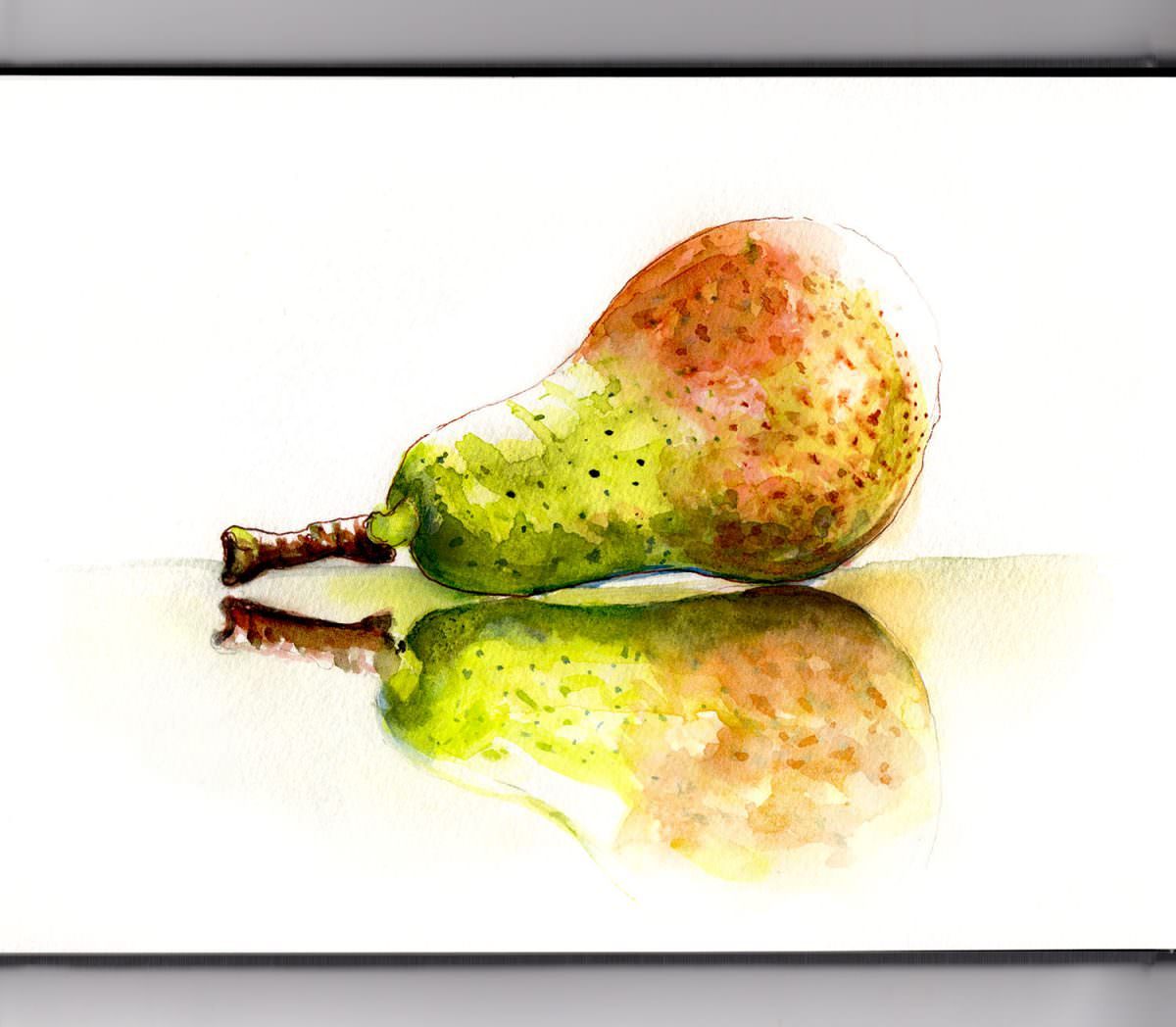 #WorldWateroclorGroup - Day 20 - Reflections On Pears - Doodlewash