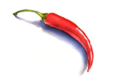 Day 6 - Chili Peppers On A Chilly Day