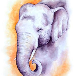 Asian Elephant – Watercolor Print [8×10]