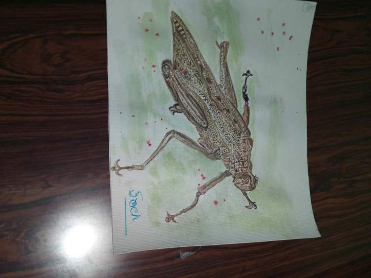 We both jumped to gather n i clicked him. To draw our D.D.Wash . See this handsome guy n hope you en
