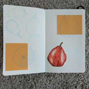 I haven't had a ton of time to art this month, but I did try doing a study of a red pear a cou