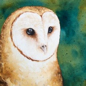 Barn Owl – Watercolor Print [5×7]