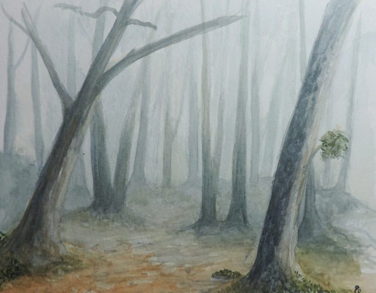 One of my first attempts in watercolour. Foggy forest, Grampians, Victoria, 2015 foggy forest