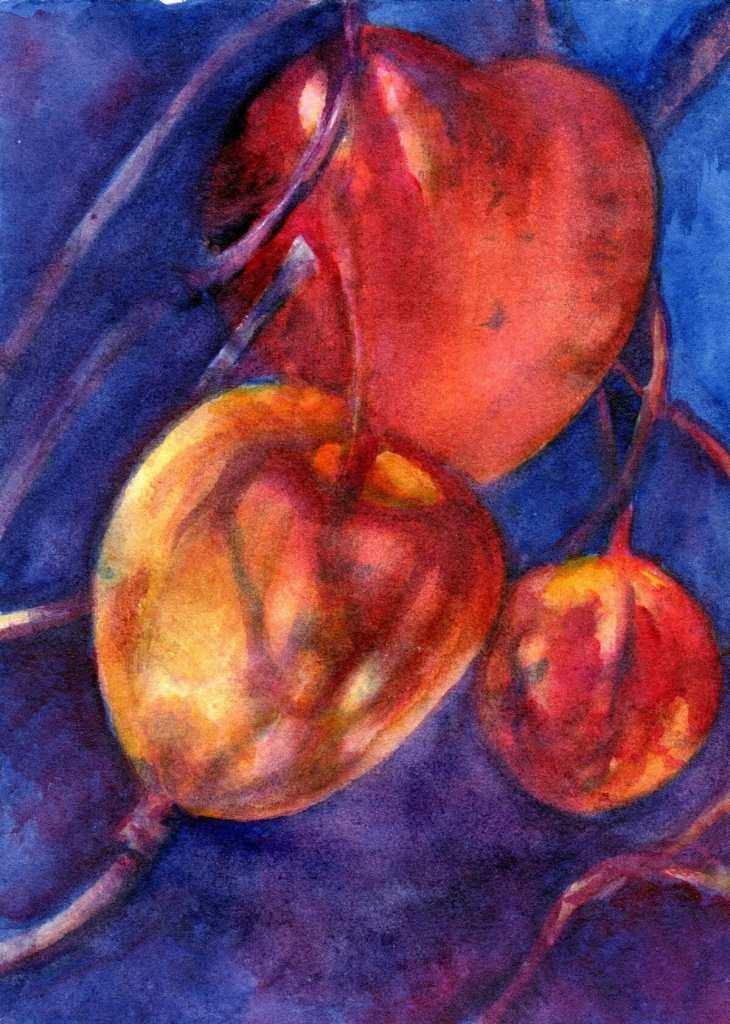 Chinese Lantern Berries-Da Vinci Hansa Yellow Deep, Indanthrene blue, Permanent Rose on J. Whatman 1