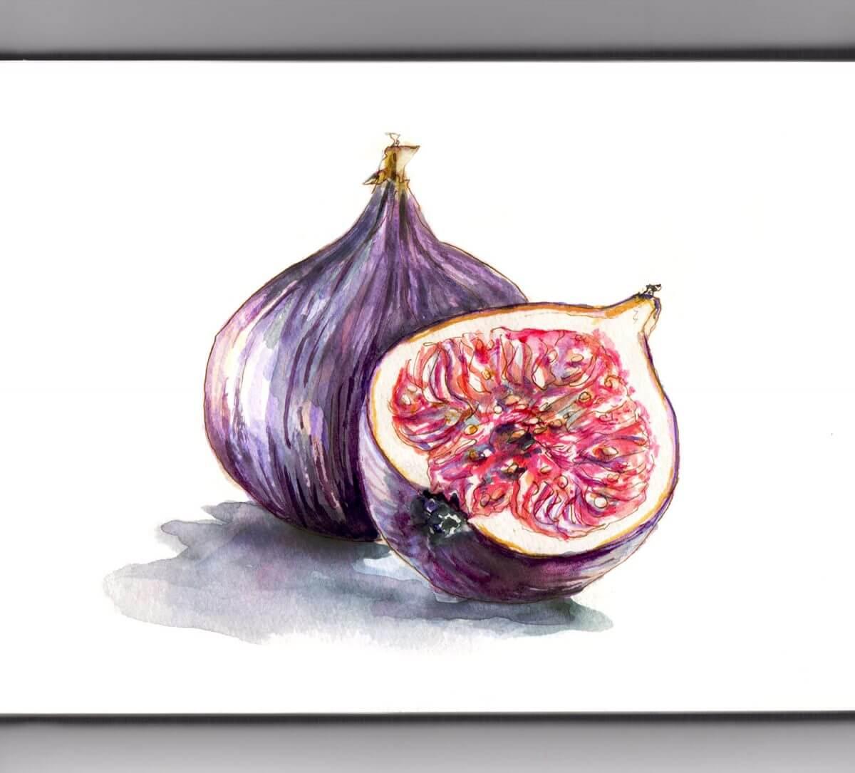 #WorldWatercolorGroup - Day 1 - Cornucopia - Figs - Doodlewash
