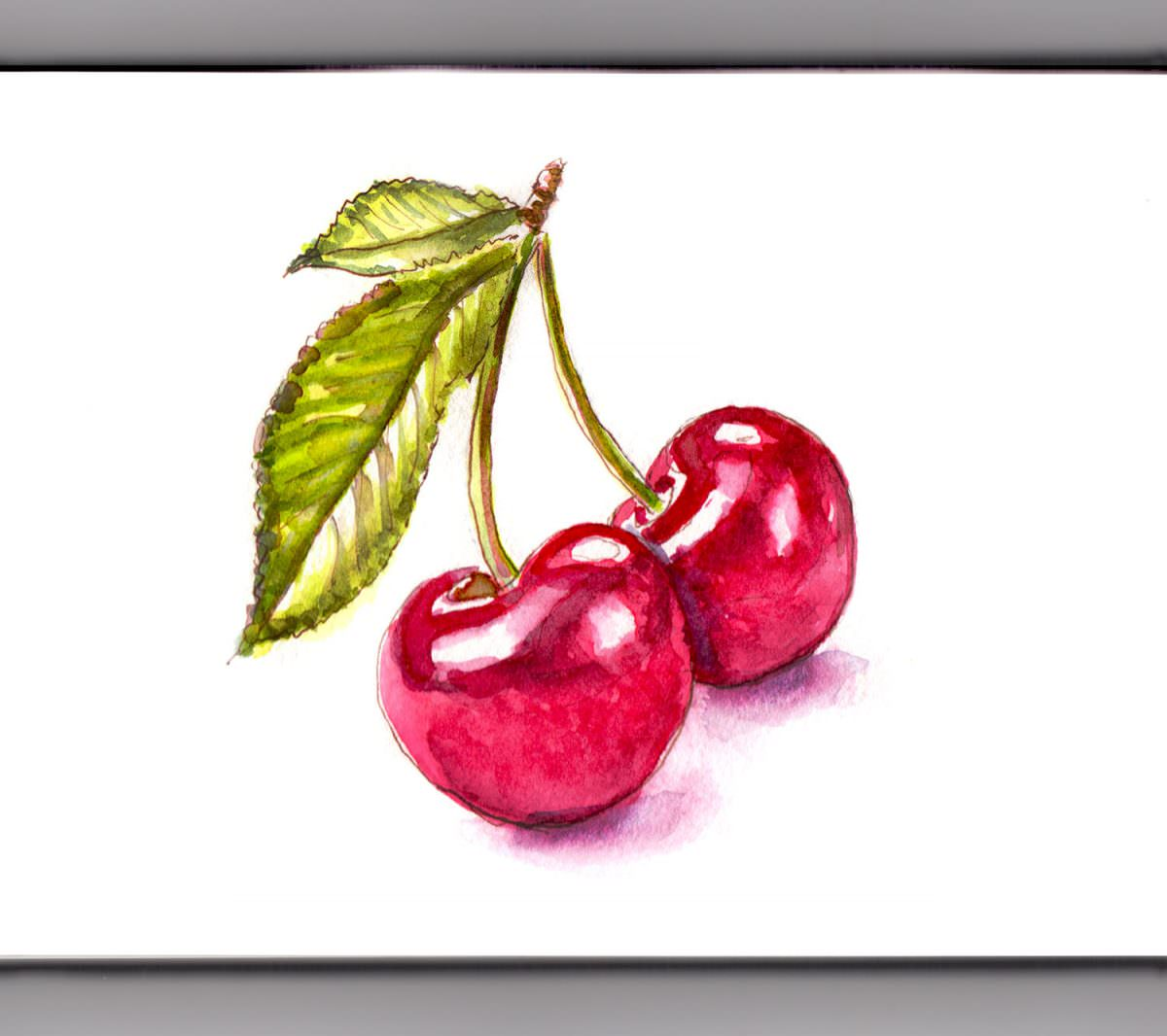 #WorldWatercolorGroup - The Cherry On Top - Cherries - Doodlewash