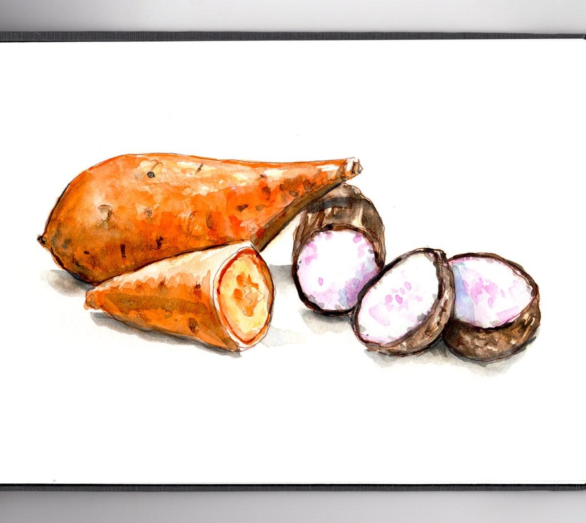 #WorldWatercolorGroup - Day 20 - Sweet Potatoes Vs Yams - Doodlewash