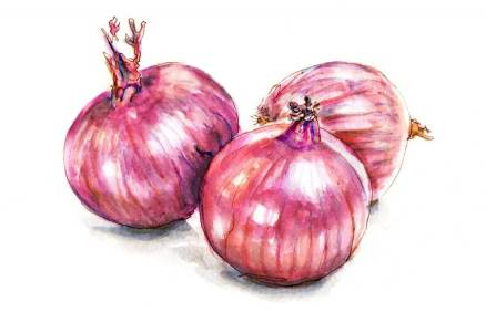 Day 5 - Red Onions
