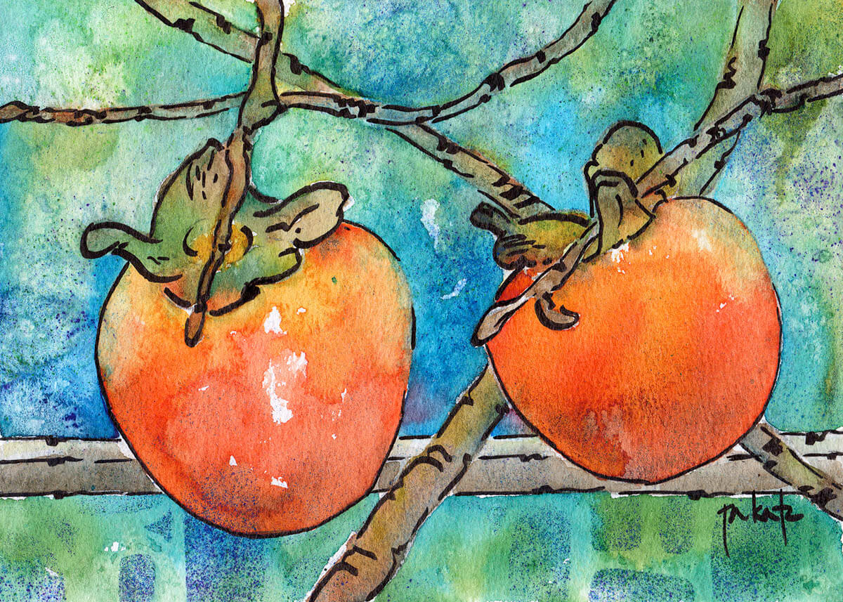 Persimmons Of Provence