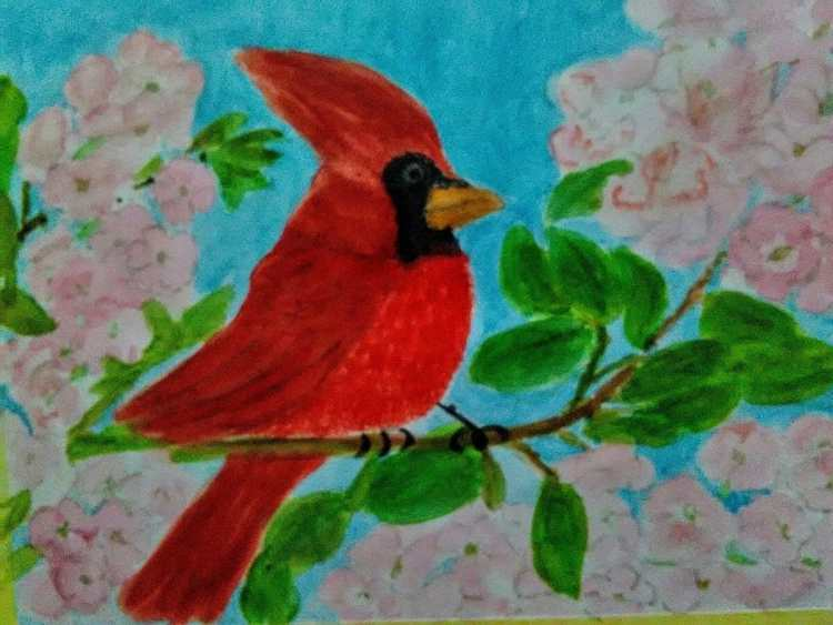 There is no such bird in our country. It's exotic to me. It must be nice to see the flock of t