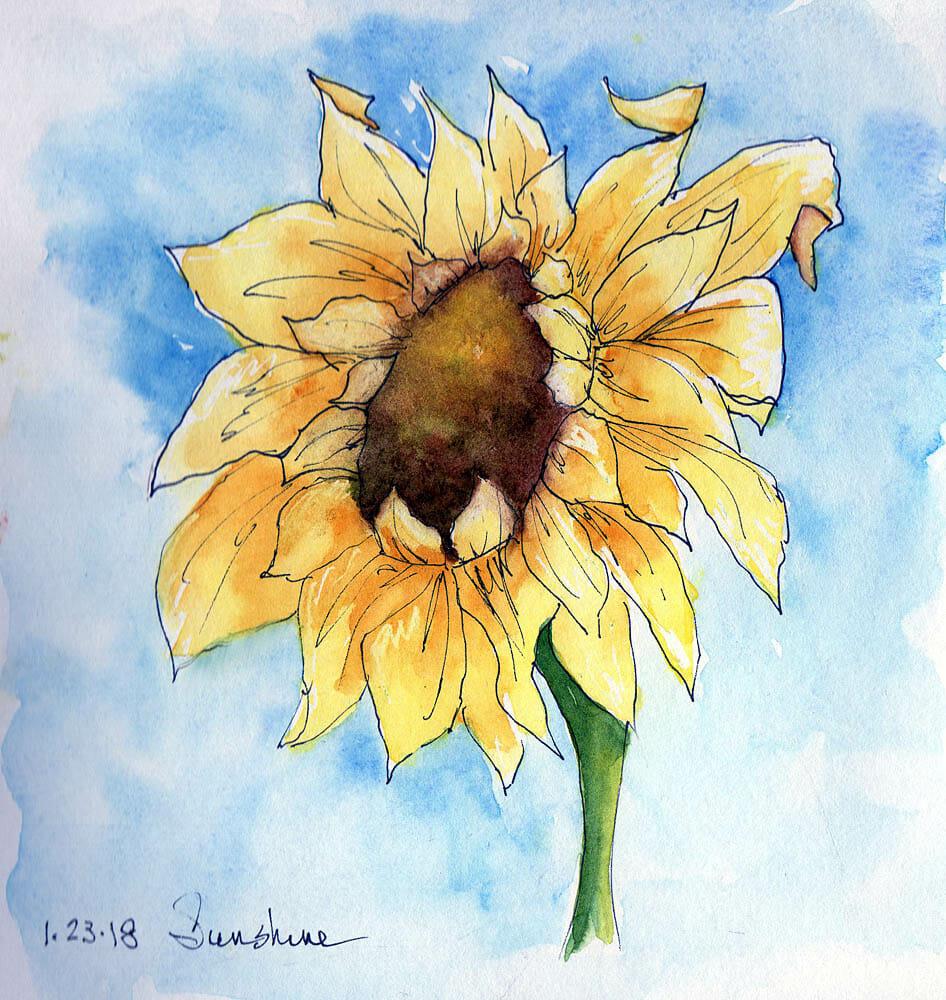 1.23.18 Sunshine 1.23.18 Sunshine img324