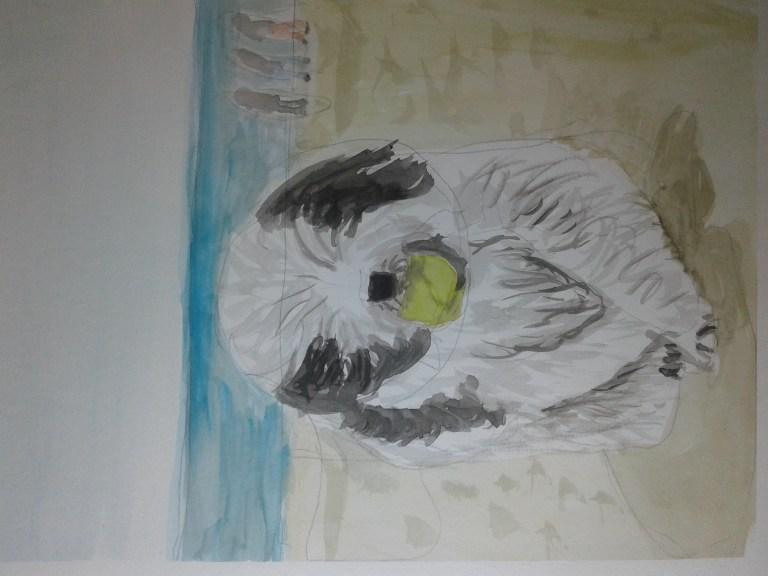 a cute puppy with a ball! 20180115_125620
