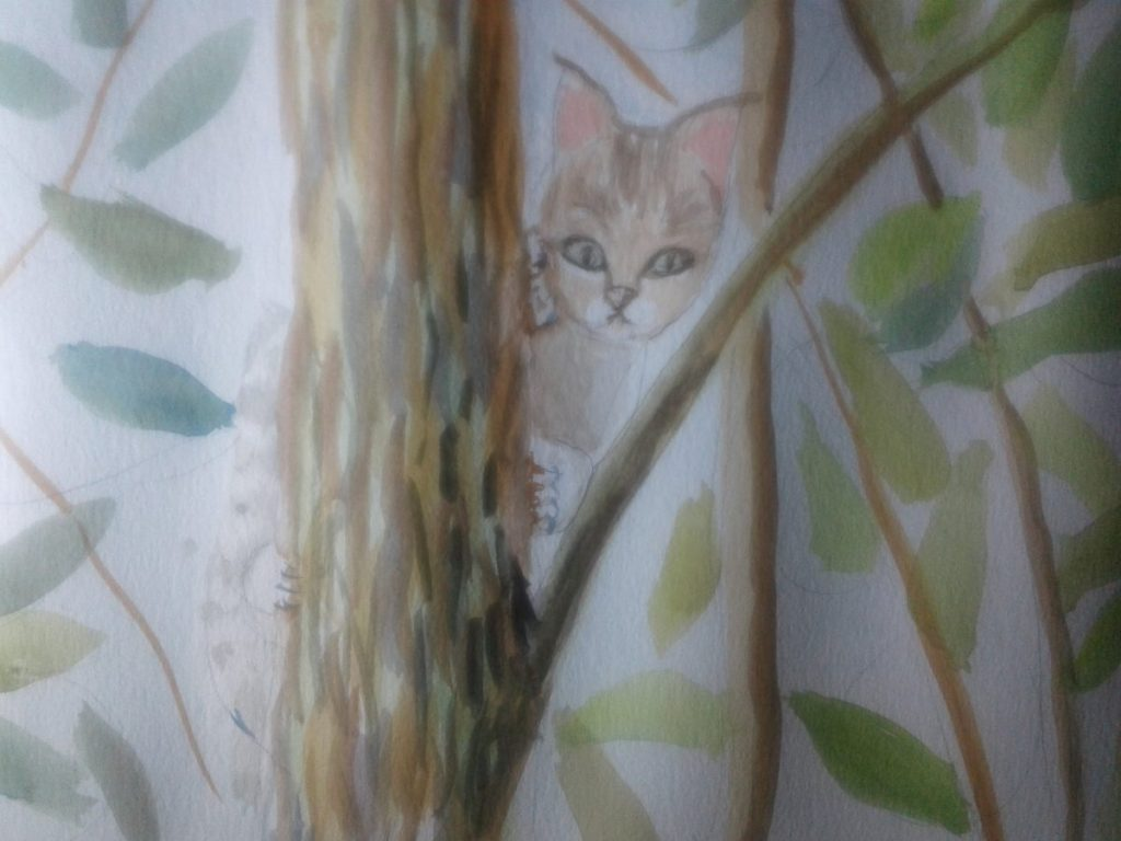 """So we have a road """"journey"""" and a """"kitten"""" in a tree..enjoy. 20180127_154843"""