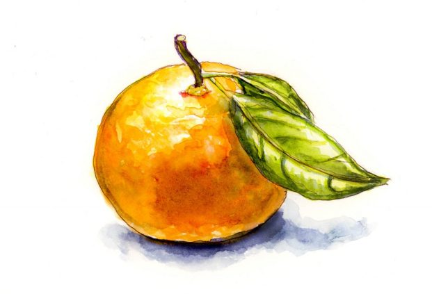 #WorldWatercolorGroup - Day 27 - Peach - Making An Illustrated Cookbook - Doodlewash