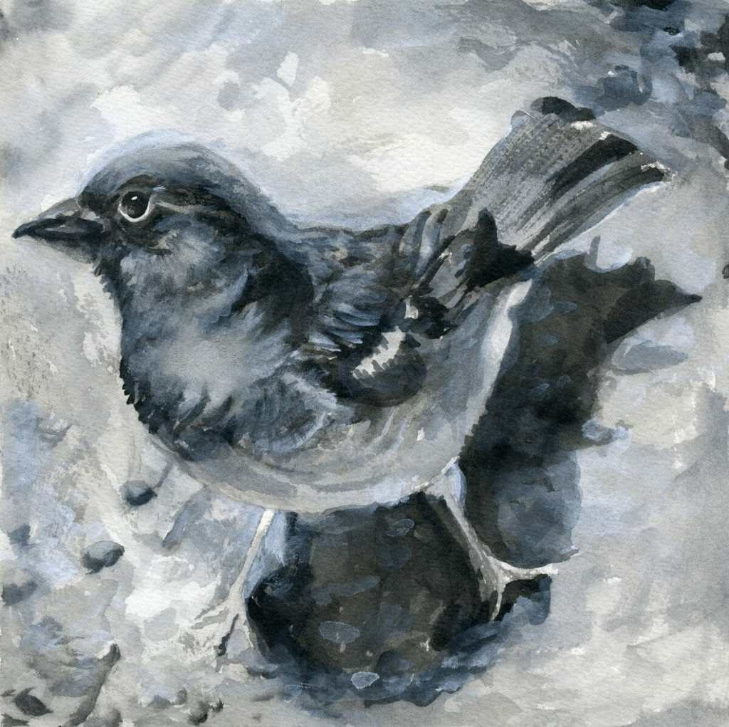 Birds-Painted with the black, white and gray paints from the Prima Classics palette on Saunders Wate