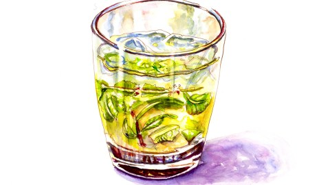 #WorldWatercolorGroup - Day 22 - Mint Leaves And Mojitos - Doodlewash