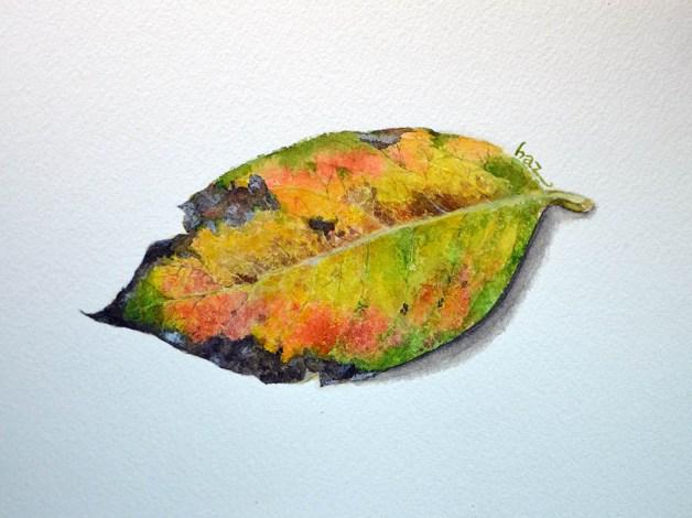 #WorldWatercolorGroup - Watercolor by Hoang Huyen Anh - Doodlewash