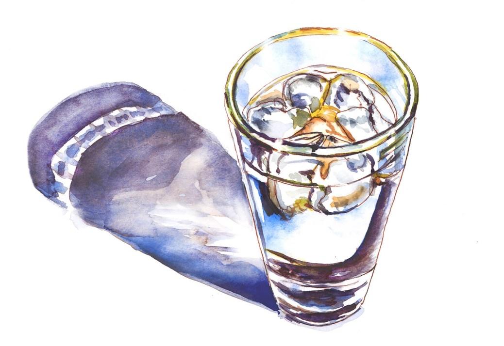 #WorldWatercolorGroup - Day 31 - Glass Of Watercolor - A Refreshing Finish - Doodlewash