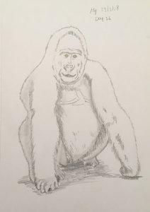 Day 36 Gorilla 20180329 Gorilla dag 36