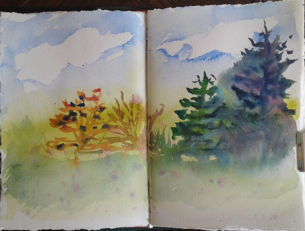 Day 295…trees Last night the prompt was trees. Which for me was an excuse to just play with co