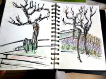 Some more sketches from my sketchbooks 17342625_1379142435457836_787901896613612261_nIMG_20180301_14