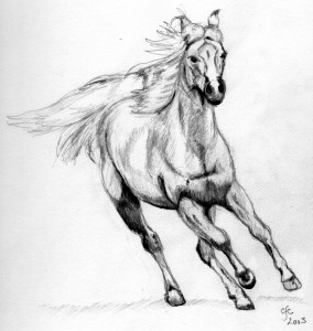 Pencil drawing of a horse Kentucky Horse