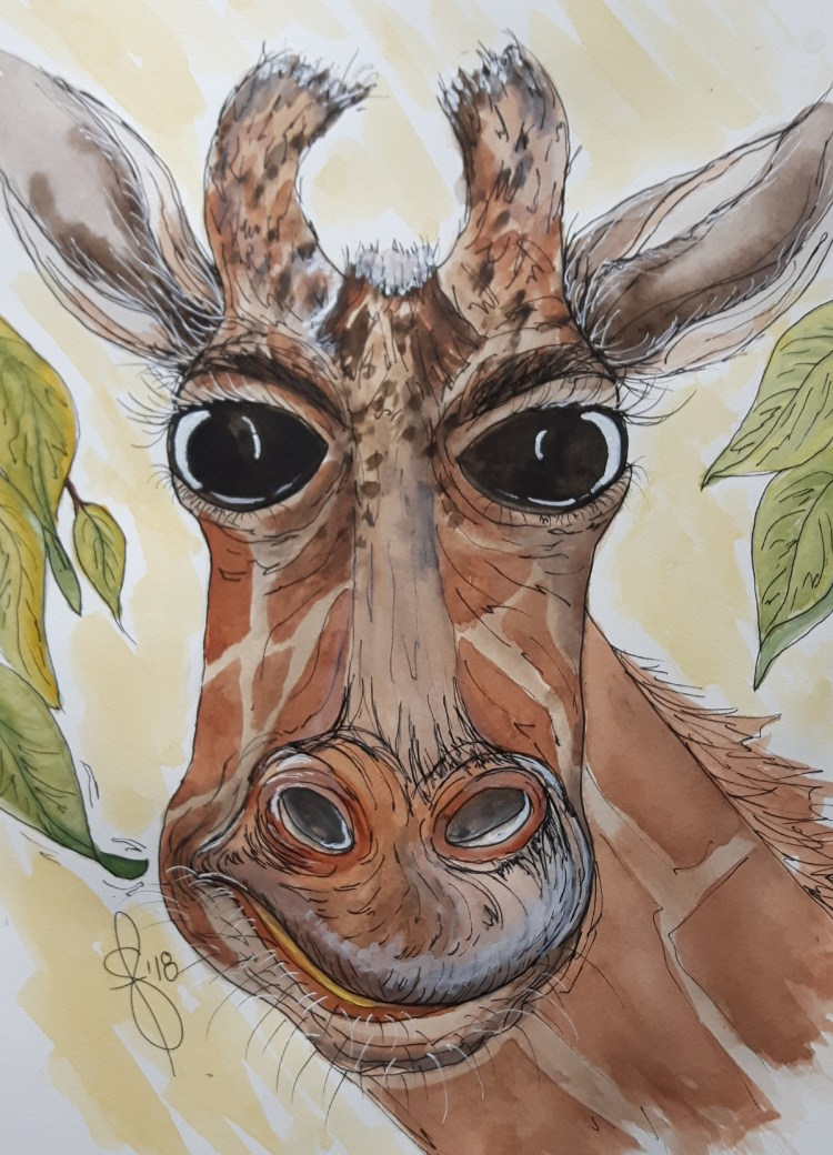 """Maude"" Artist Susan Feniak. QoR Watercolor on Arches hot press paper 8″x10″"