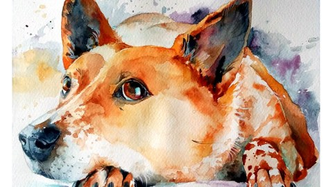 Watercolor Painting by Mishu Bogan - Dog - Doodlewash #WorldWatercolorGroup