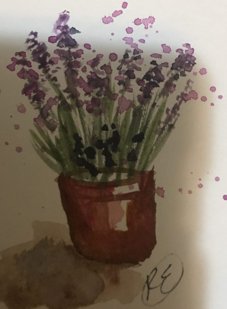 """Just posting little late on May 1st prompt """" flowers"""". I really wanted to view the Lavender fest"""