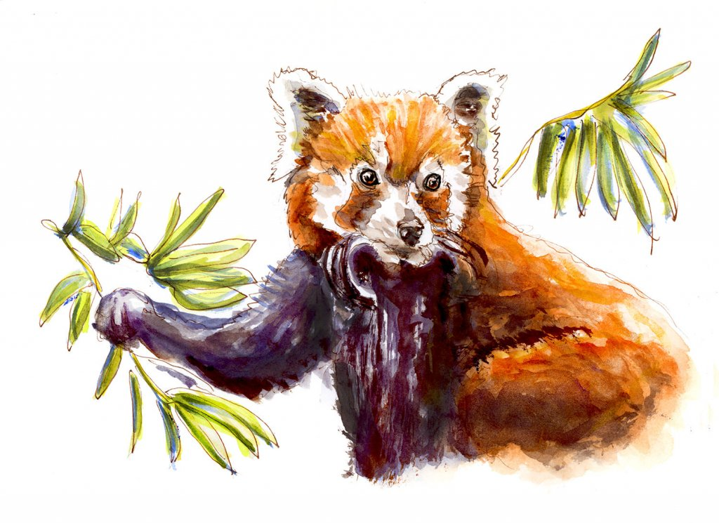 Day 30 - Red Panda Watercolor Trees - #doodlewashMay2018 Doodlewash