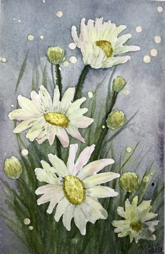 """""""Daisies in the Starlight""""… Daniel Smith Watercolors on Arches Journal…5.5&#"""