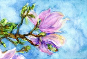 Magnolias – not really happy with the way this one came out. I was trying to catch the spark o