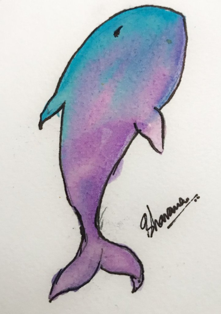 A playful dolphin 🐬 I am starting to play with colours … this is my beginning. 0B4A21A