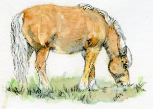 Postcards for the Lunch Bag – Belgian Draft Horse. I used the colors that are in Jennifer McLe