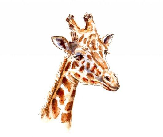 Day 21 - Giraffe Watercolor