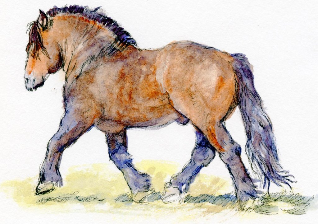 Postcards for the Lunch Bag: Polish Draft Horse-Can you believe this was done with Charlie's S