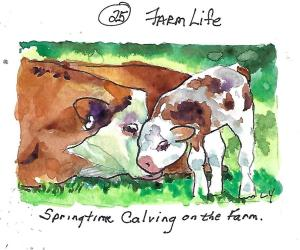 Springtime calving on the farm. #farmlife #worldwatercolormonth #Cowandcalf #lindayoungwatercolors #