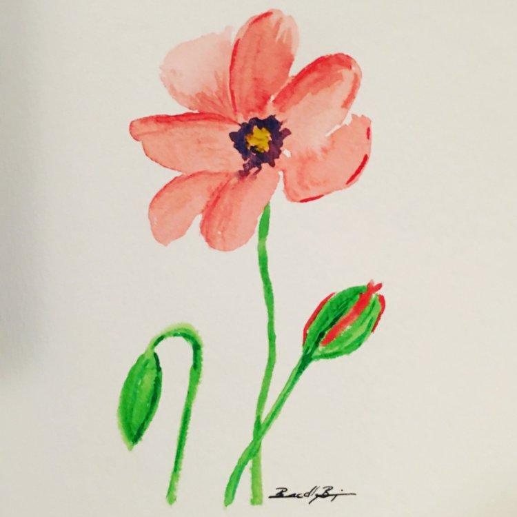Day 11: Beautiful Blooms #worldwatercolorgroup #worldwatercolormonth #rivervalleyartisan #beautifulb